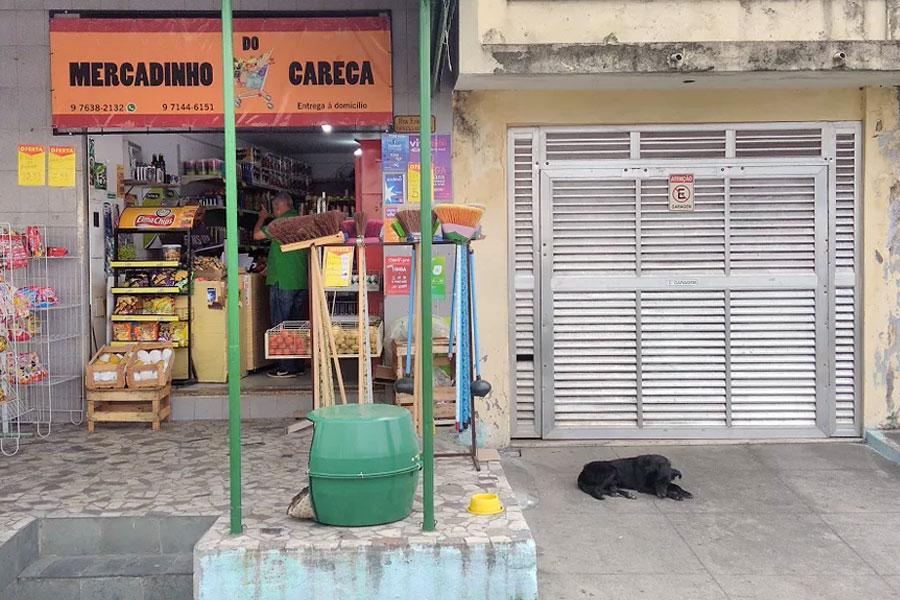 O cão Coceirinha e a mercearia do Careca.
